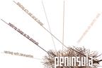 PENINs.png