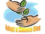 adoptachineseblog.jpg
