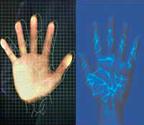 hand_holy.jpg