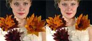kukkia1.jpg