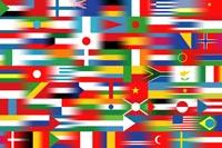 metisseflag.jpg