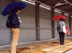 raindance2_01.jpg