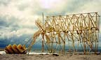 strandbeest0001.jpg