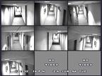 surveillance28.jpg